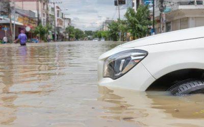 Jangan Tertipu, Kenali Ciri Mobil Bekas Banjir